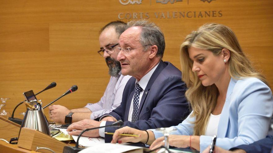 El director de l'AVAF, Joan Llinares, en la comissió de les Corts