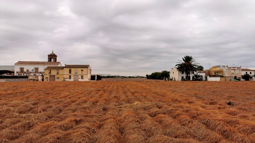 Alboraia, l'Horta Nord