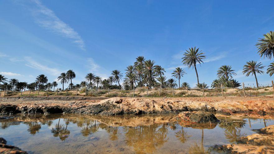 Torrevella, el Baix Segura