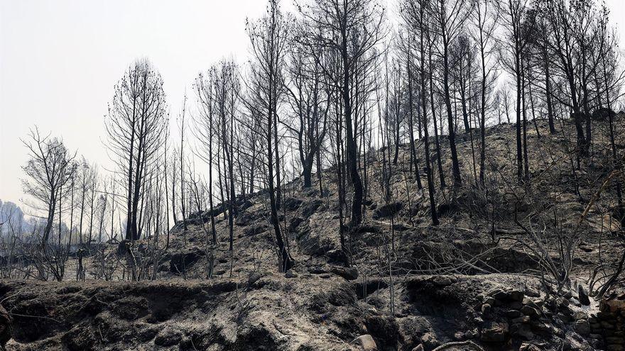 Terreny afectat per l'incendi declarat a Assuévar