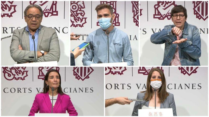 D'esquerra a dreta i de dalt a baix: Mata (PSOE), Ferri (Compromís), Lima (UP), Merino (Cs) i Vega (Vox)