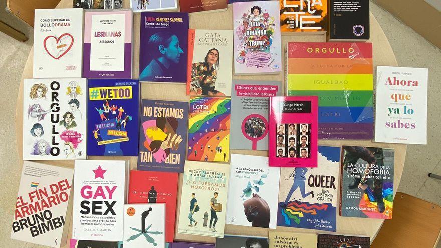 Els 32 llibres LGTBI que l'Ajuntament de Castelló de la Plana vol donar a onze instituts de la ciutat