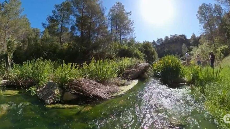 Els rius espanyols Duero, Ebre, Guadalquivir i Guadiana estan situats en la categoria d'estat moderat
