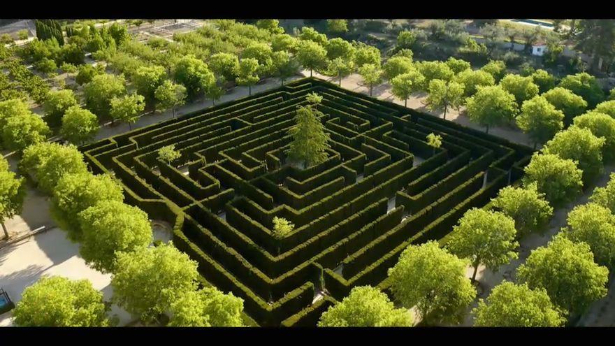 La principal vegetació són els xiprers i un cedre al centre